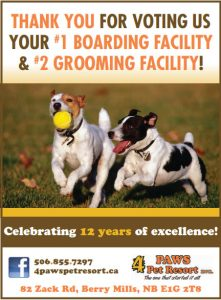 4 Paws Voted #1 Boarding Facility in Greater Moncton